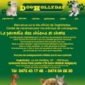 Dog Hollyday - Pension canine et féline à Boussu, Belgique