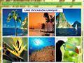 Maisons à vendre à Sainte Lucie Caraïbes - Le Domaine de Balembouche